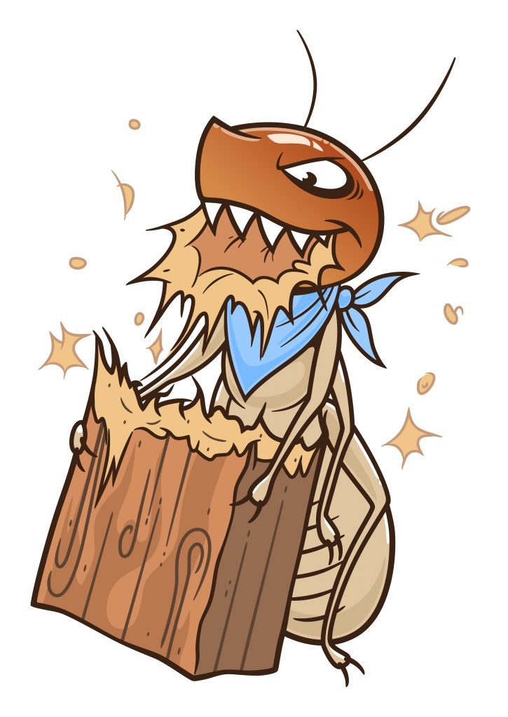 termite toon