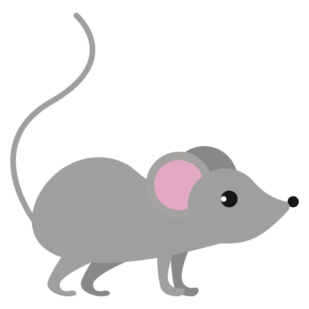 mouse toon